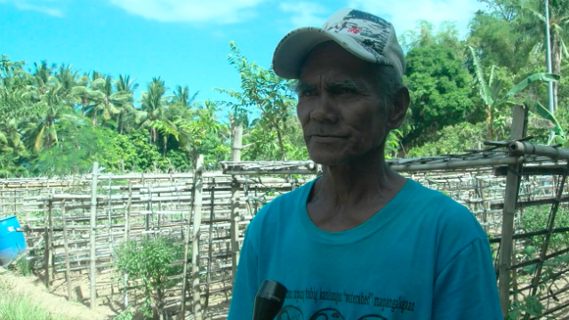 RECOVERY. Village elder Clemencio Carpiano says Malawig has already recovered from Yolanda thanks to the help of CordAid. Photo by Jeff Digma/ Rappler